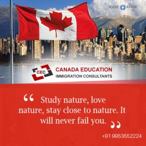 Canada Immigrate Consultants