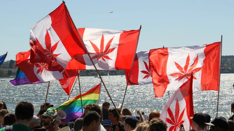 What you need for Canada Immigration?
