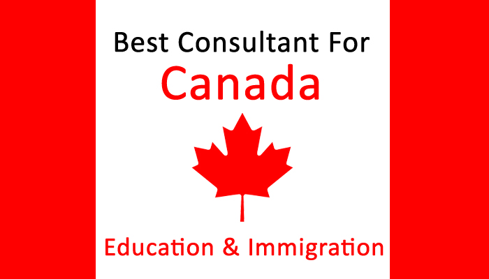 Best Consultant For Canada